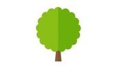 drzewko-kostka-1a