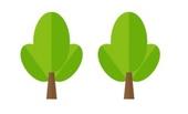 drzewko-kostka-3