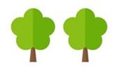 drzewko-kostka-4